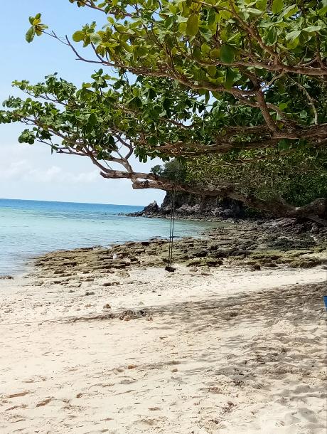 Удивительный остров Ко Талу