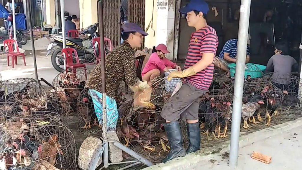 Какие места во Вьетнаме туристам лучше обходить стороной