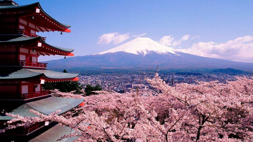 Какие правила нужно знать при поездке в Японию