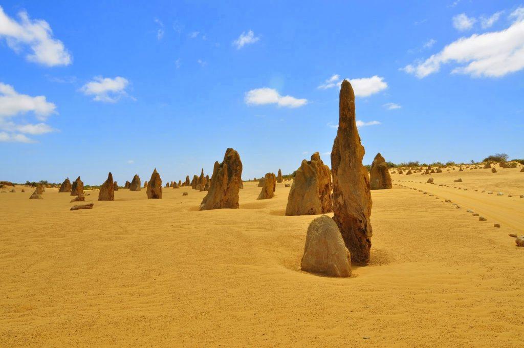 Путешествие в Австралию: 5 аргументов за