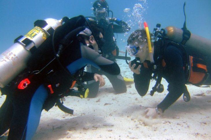 Безопасный дайвинг: 10 правил, как вести себя под водой, чтобы избежать рисков