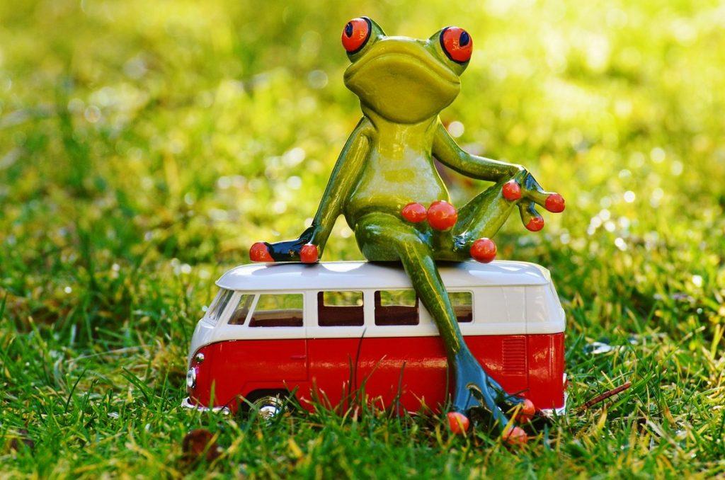 Как организовать поездку в отпуск для большой компании
