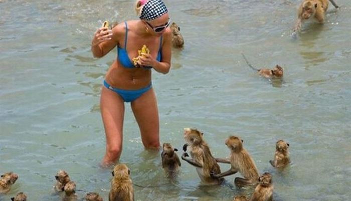 Фотоподборка курьезов с пляжного отдыха