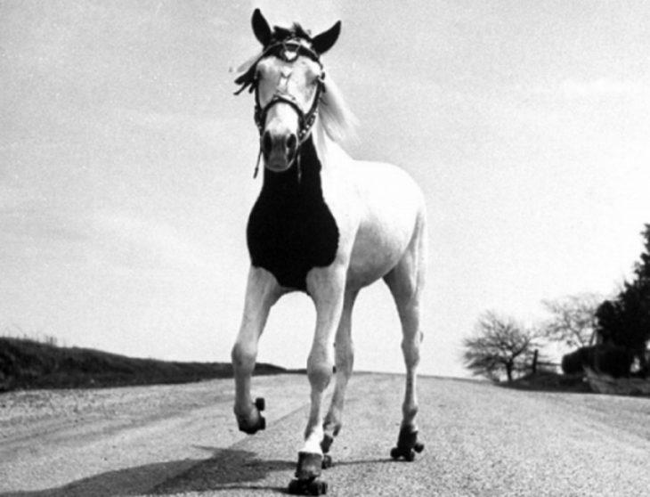 Ретро-фотографии, обладающие особым шармом